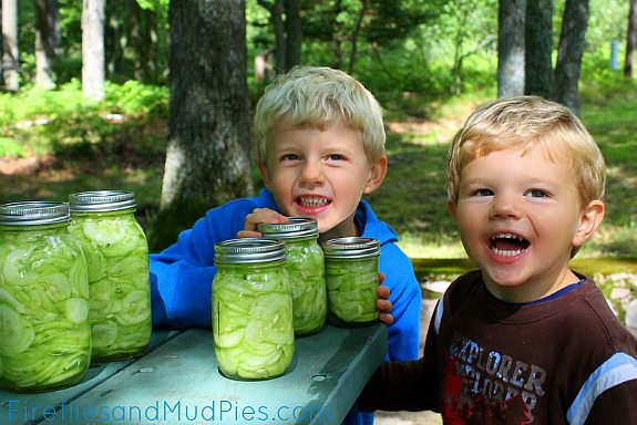 How to Make Soured Cucumbers - Fireflies and Mud Pies