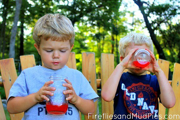 Raspberry Lemonade Recipe - Fireflies and Mud Pies