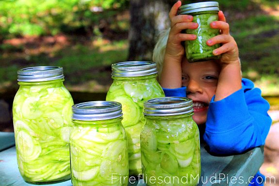 Soured Cucumbers - Fireflies and Mud Pies