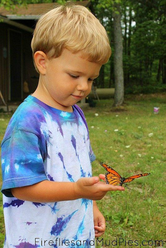 monarch-on-childs-finger