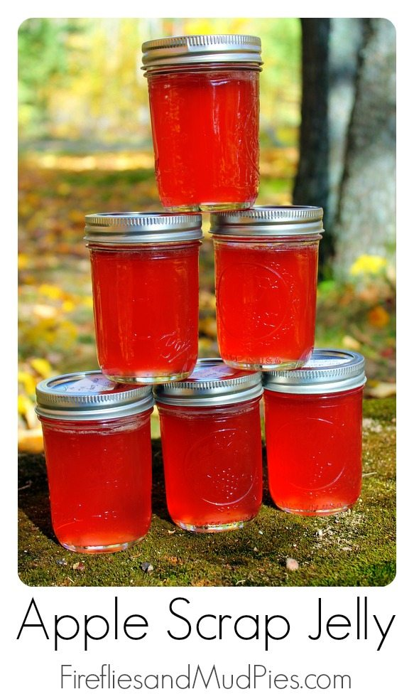 apple scrap jelly 1