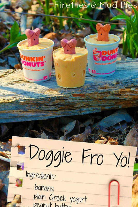 Homemade Doggie Fro Yo - Fireflies and Mud Pies