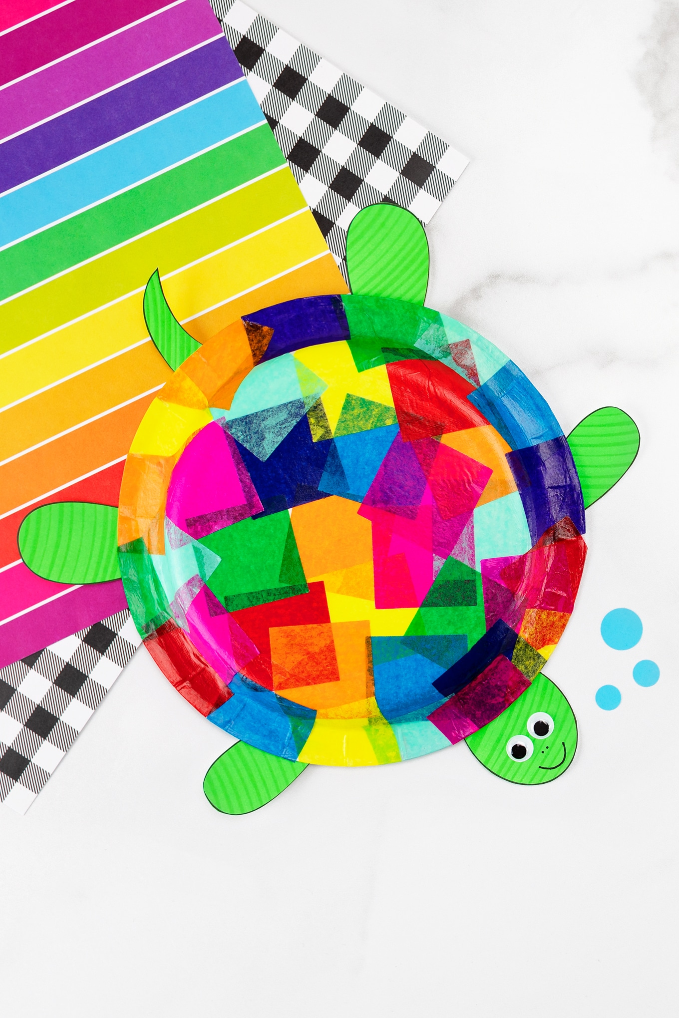 How To Make A Paper Plate Turtle - Paper Plate Hub | 2039x1360