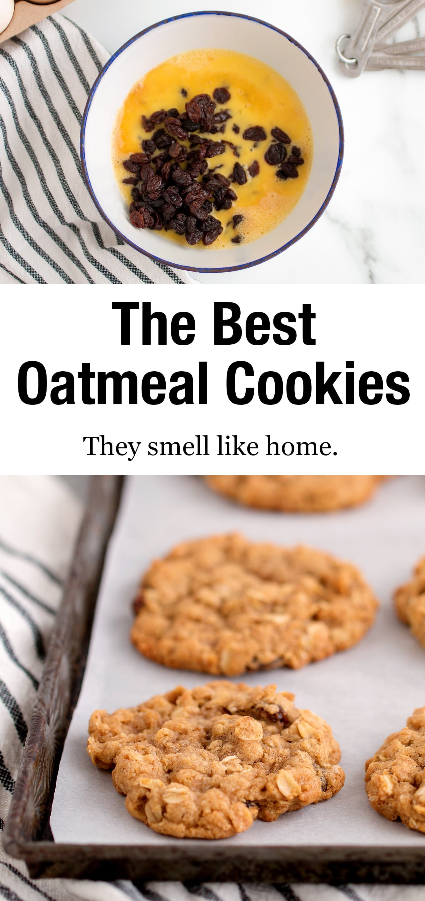 Chewy, easy, and soft! This is the only oatmeal cookie recipe you will ever need! Trust me, it's the best ever! #oatmealcookies #recipe #oatmealraisincookies #best via @firefliesandmudpies