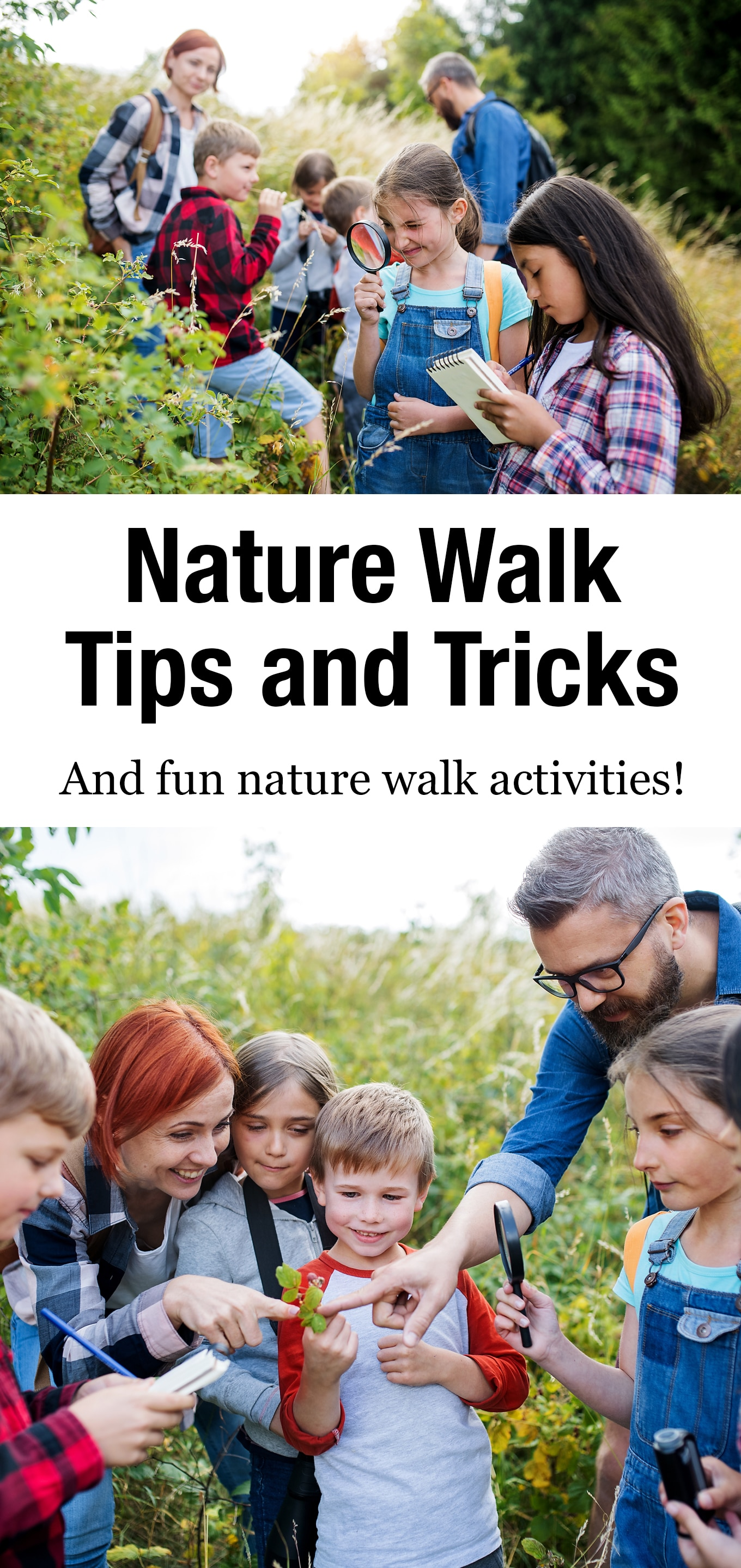 Practical nature walk tips, tricks, and fun nature walk activities for families with toddlers, preschoolers, and school-age kids. #nature #kids #naturewalks #forestschool #outdooreducation via @firefliesandmudpies