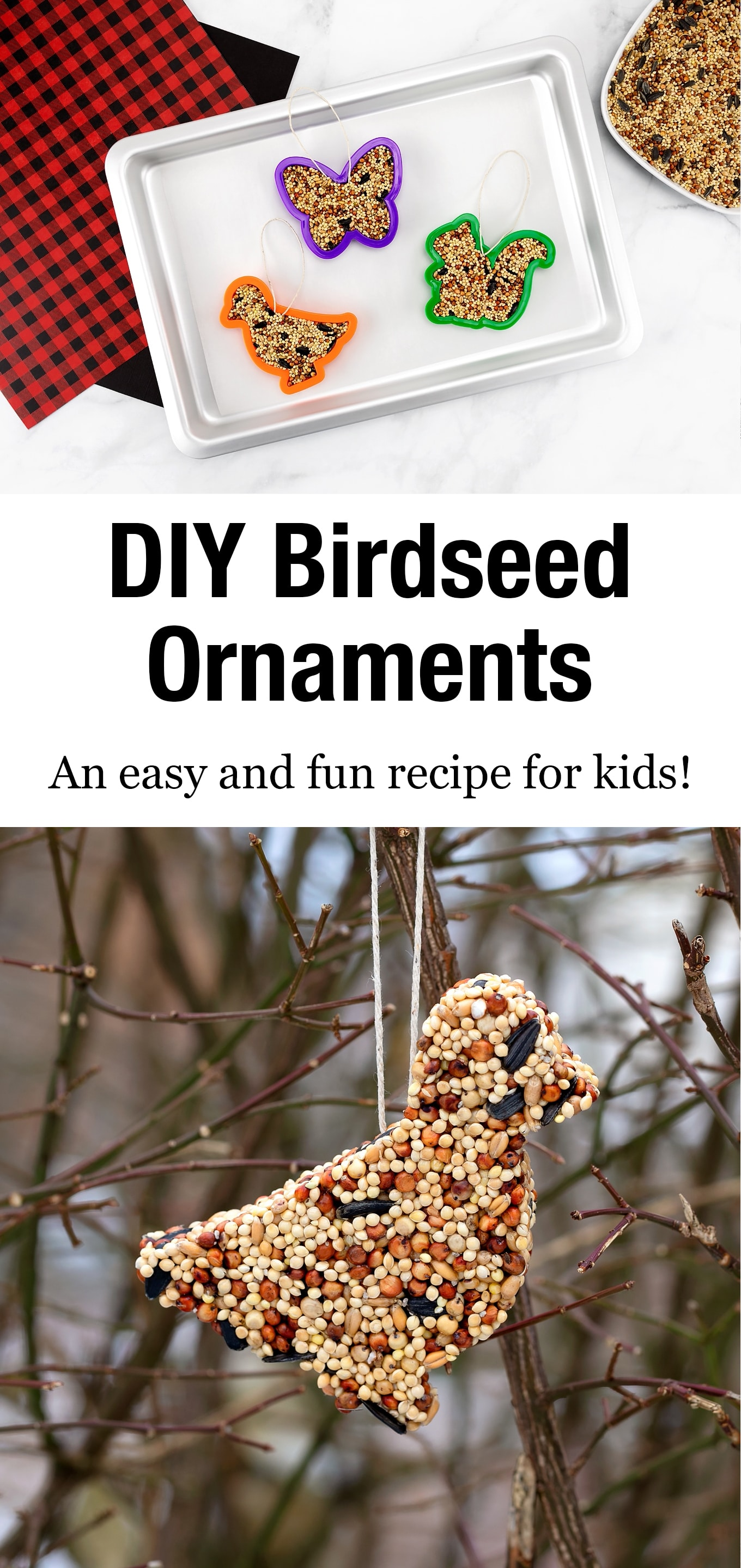 These easy DIY Birdseed Ornaments attract a wide variety of wild birds and only need 3 ingredients. Perfect for kids to make at home or in the classroom! #birdseedornaments #wintercrafts #naturecrafts via @firefliesandmudpies
