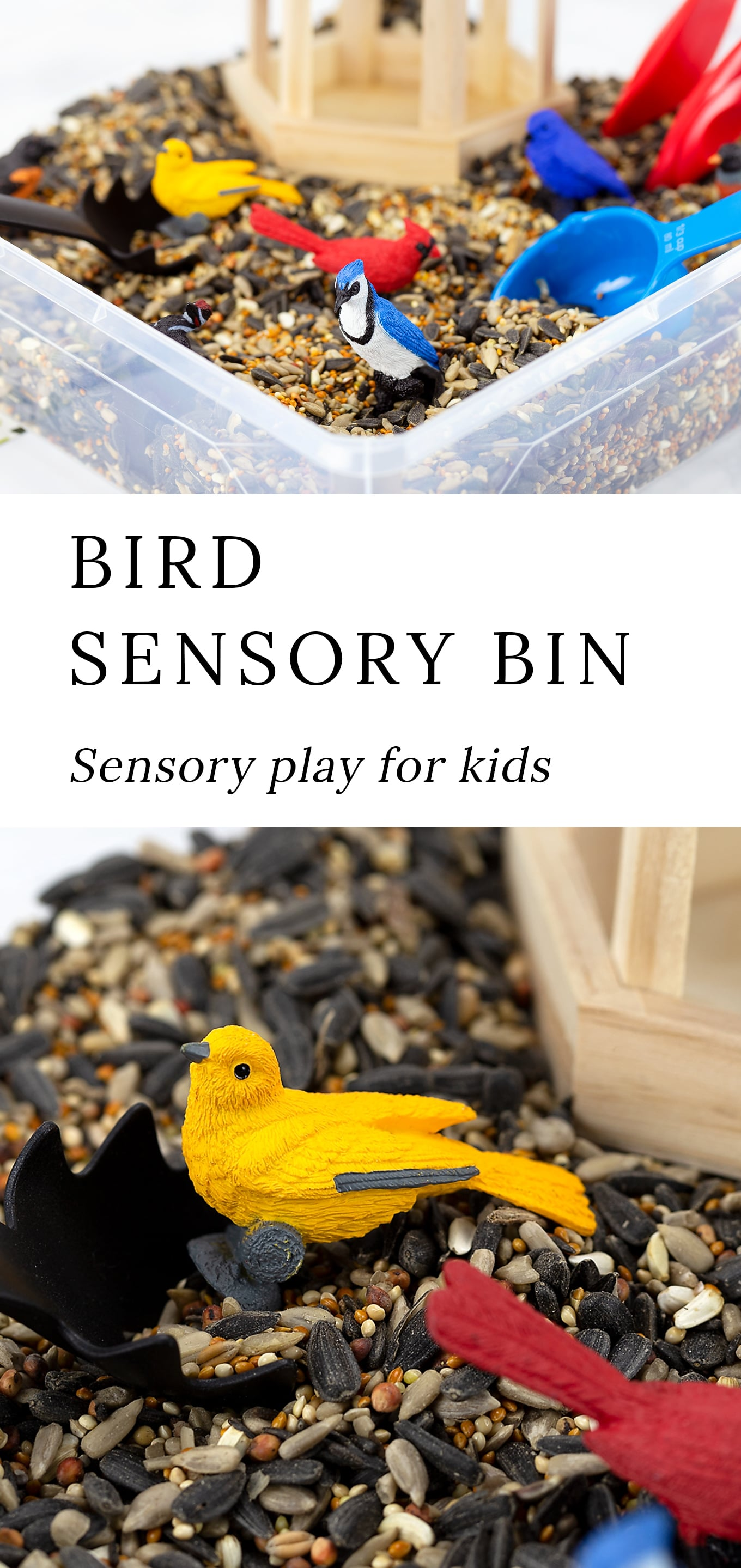 Learn about birds and invite sensory exploration with this fun Bird Sensory Bin for kids. Pair it with bird-themed preschool activities, books, and crafts. #birdsensorybin #preschool #sensorybins via @firefliesandmudpies