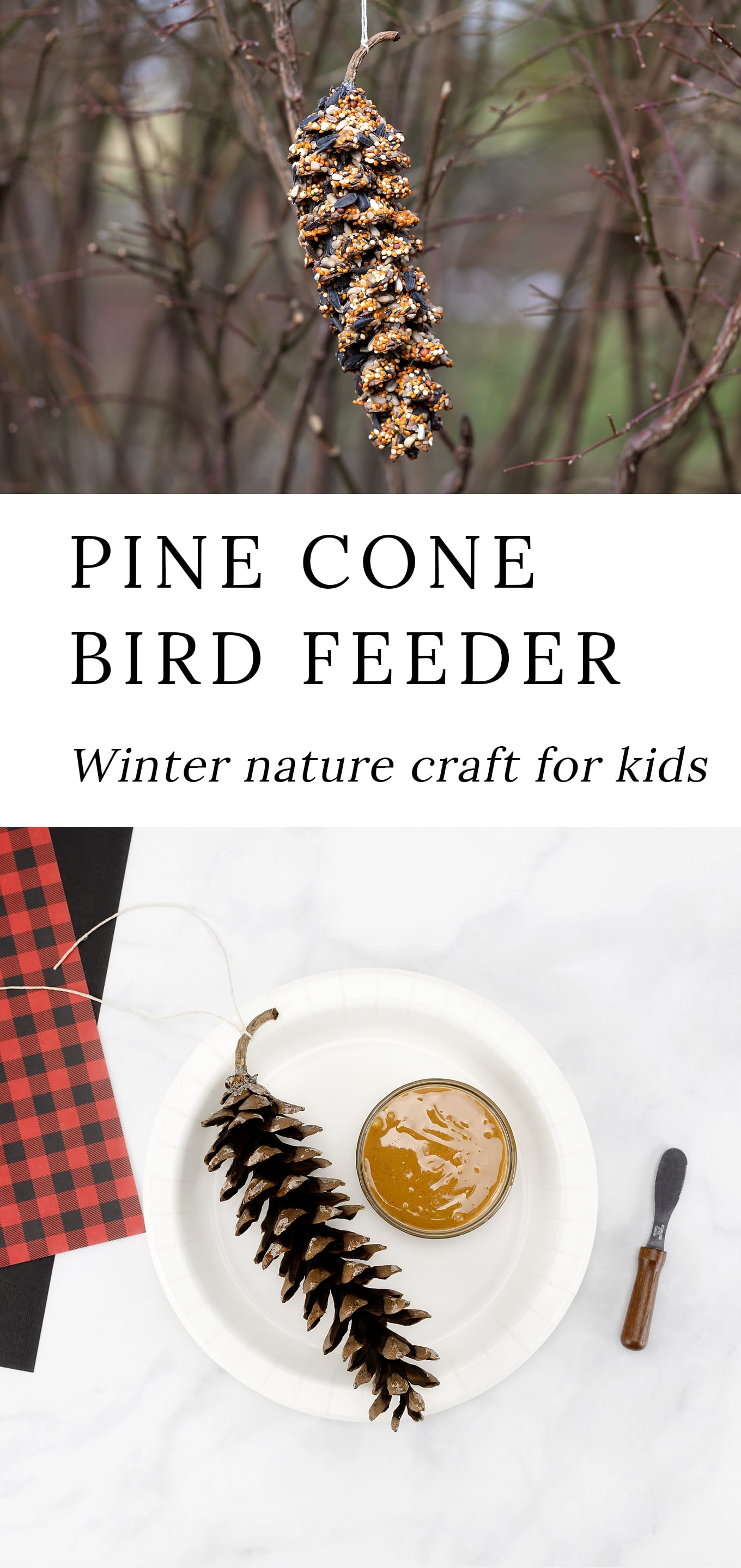 Directions, supplies, and tips for making a classic Pine Cone Bird Feeder, an easy way to provide a nutritious food source for birds while enjoying nature! #birdfeeder #pineconebirdfeeder via @firefliesandmudpies