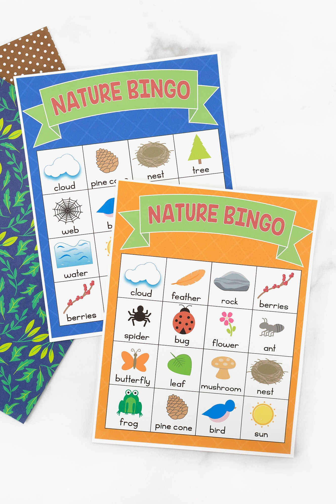 Blue and Orange Nature BINGO Cards
