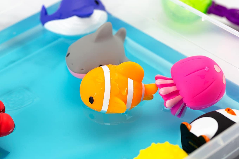 Clown Fish Bathtub Squirter in a Water Sensory Bin