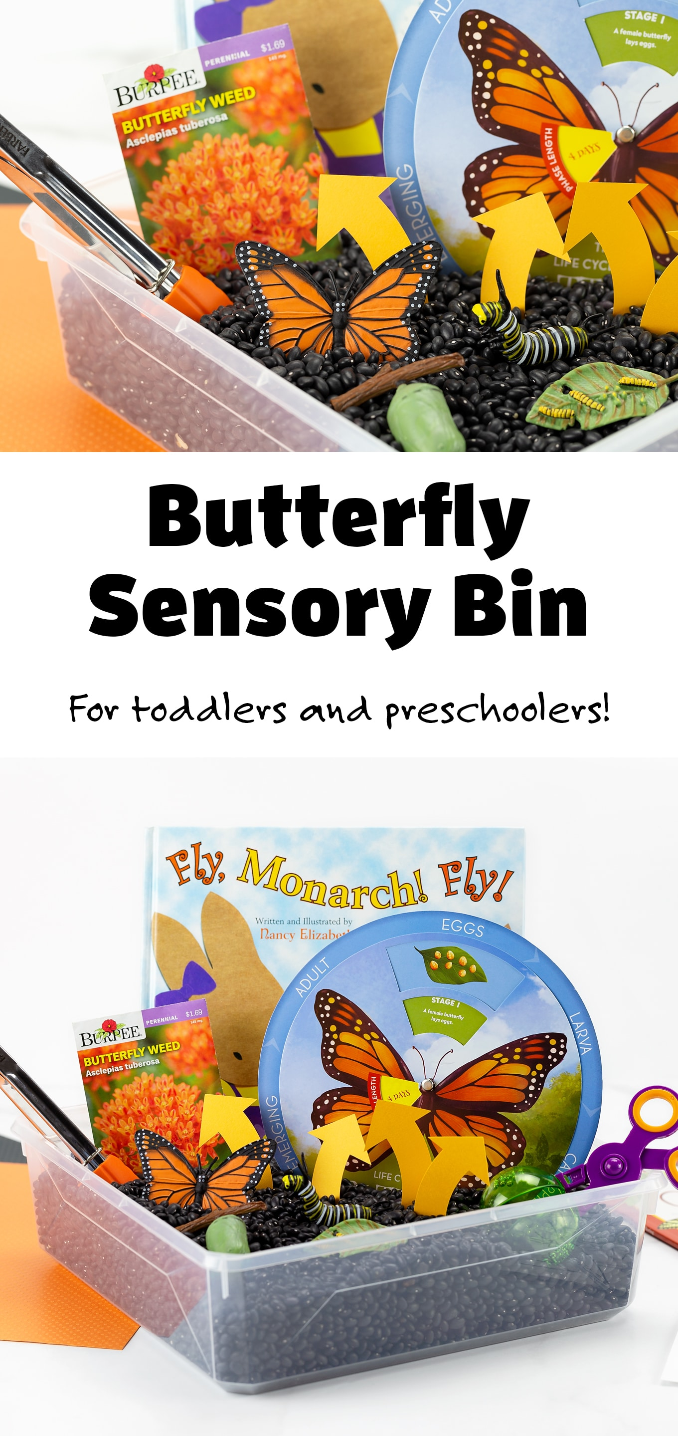 Invite kids to explore how a butterfly changes and grows throughout its lifetime with this hands-on Life Cycle of a Butterfly Activity! #lifecycleofabutterfly #activities #preschool #sensorybin #butterflyactivity via @firefliesandmudpies