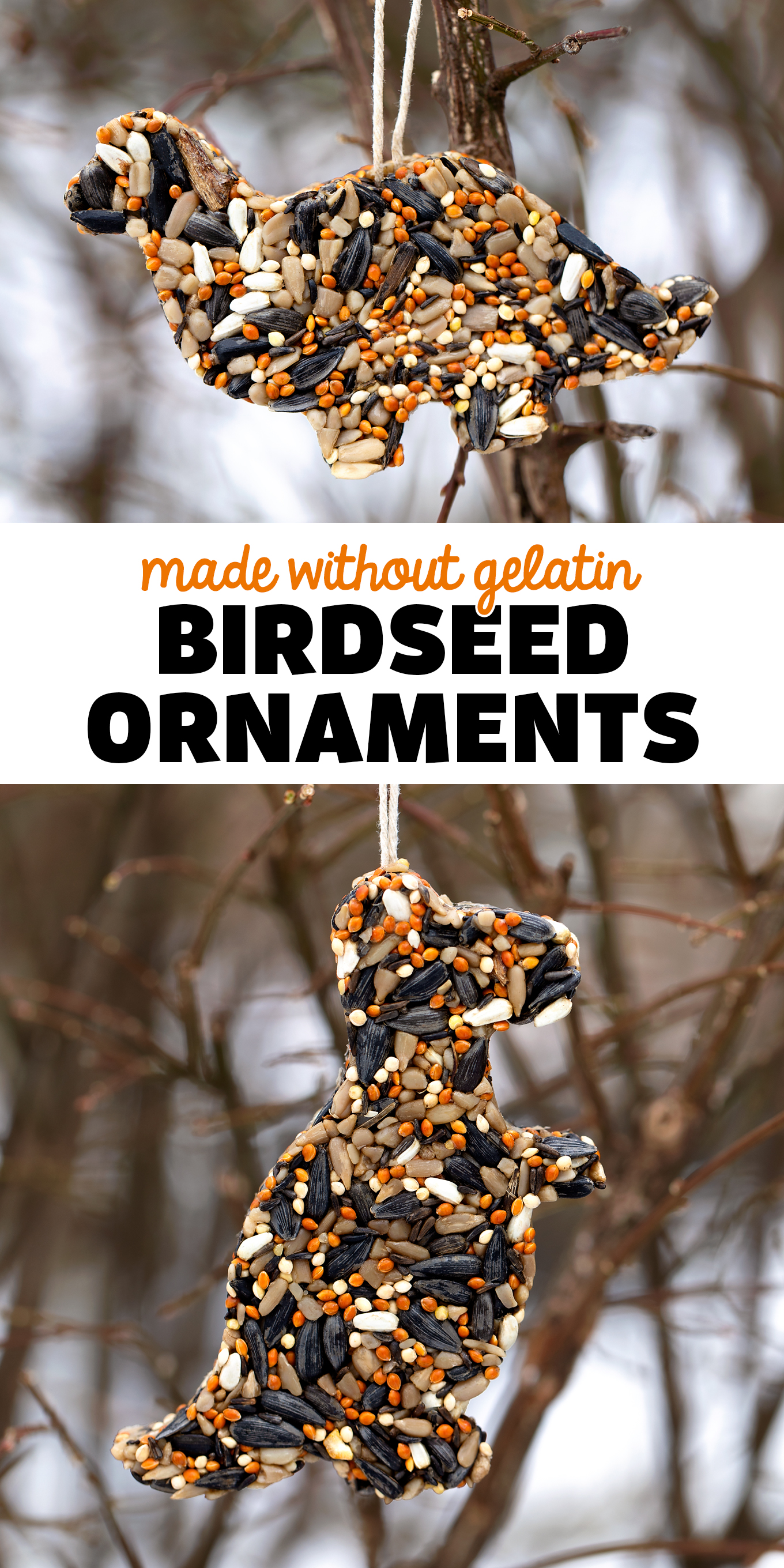 Birdseed Ornaments Made Without Gelatin - An easy and fun vegan recipe for birdseed ornaments! Follow along with Fireflies and Mud Pies for more great ideas! via @firefliesandmudpies