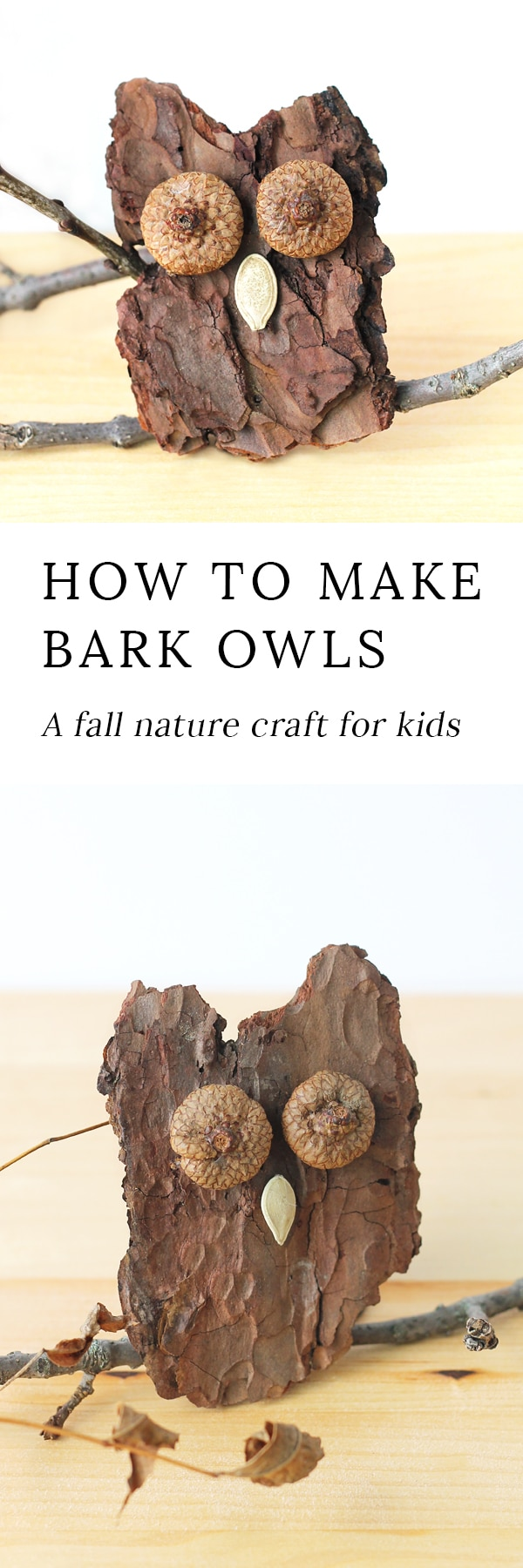 Kids of all ages will enjoy making Bark Owls from bark, acorns, twigs, and seeds after a fall nature walk.