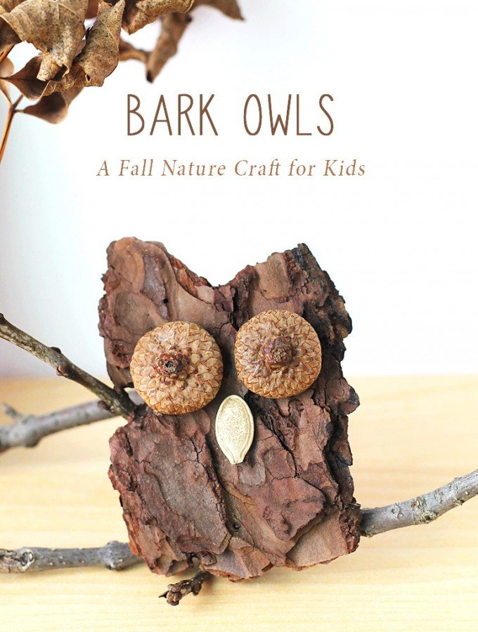 Bark Owl Craft