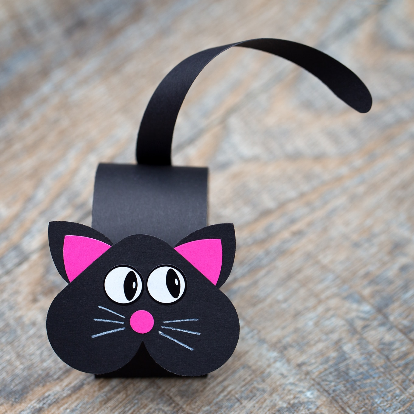 Black Cat Craft for Halloween