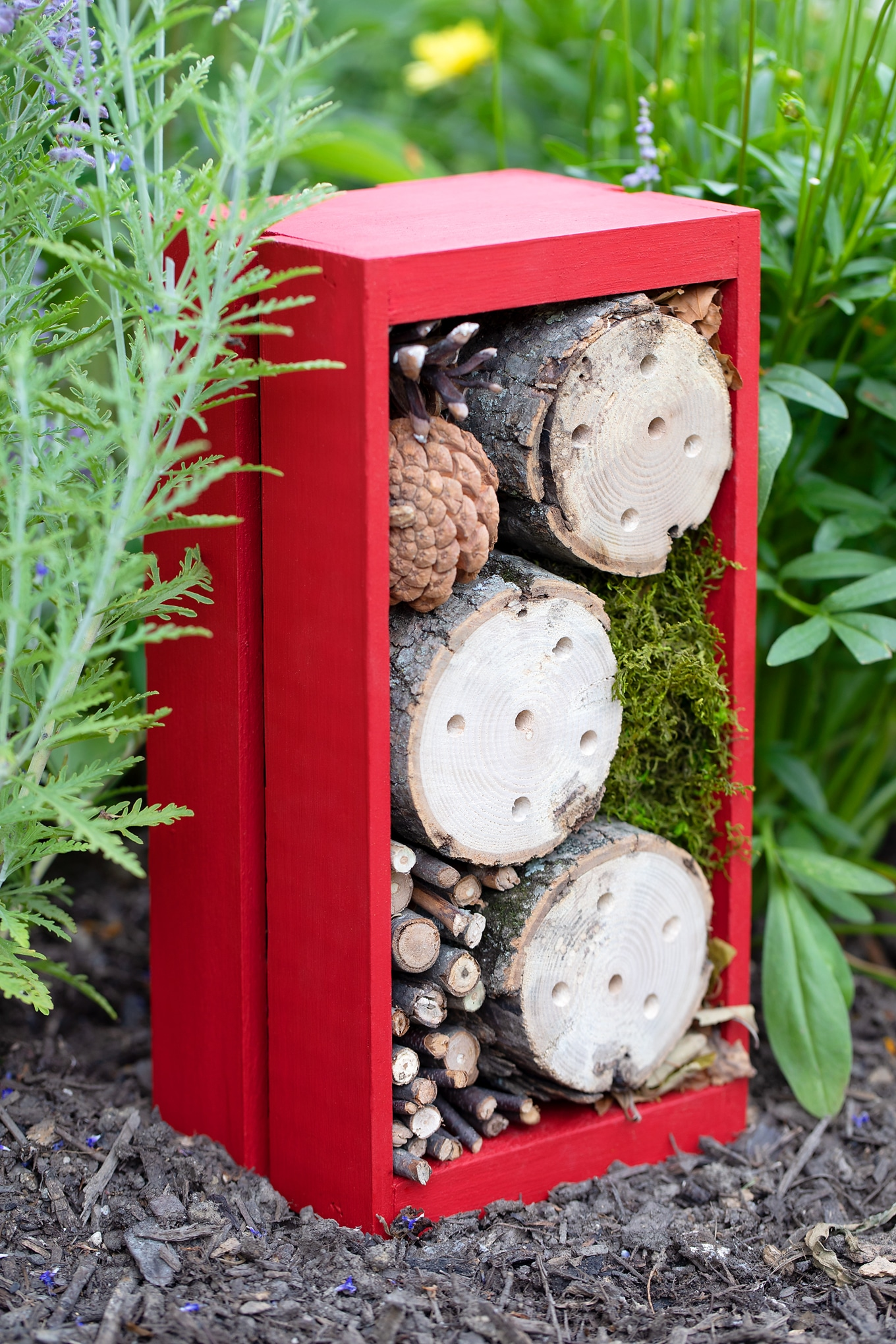 Learn how to make an easy DIY bug hotel with a wooden CD crate, logs, and other natural materials such as pine cones, sticks, moss, and leaves! via @firefliesandmudpies