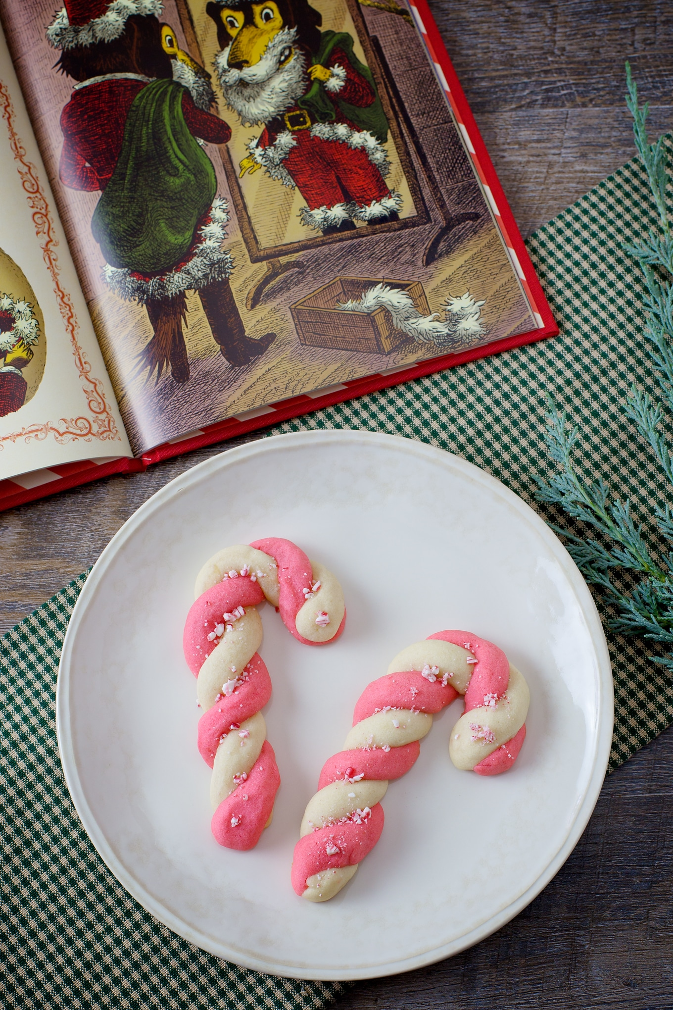 Candy Cane Cookies and Christmas Book