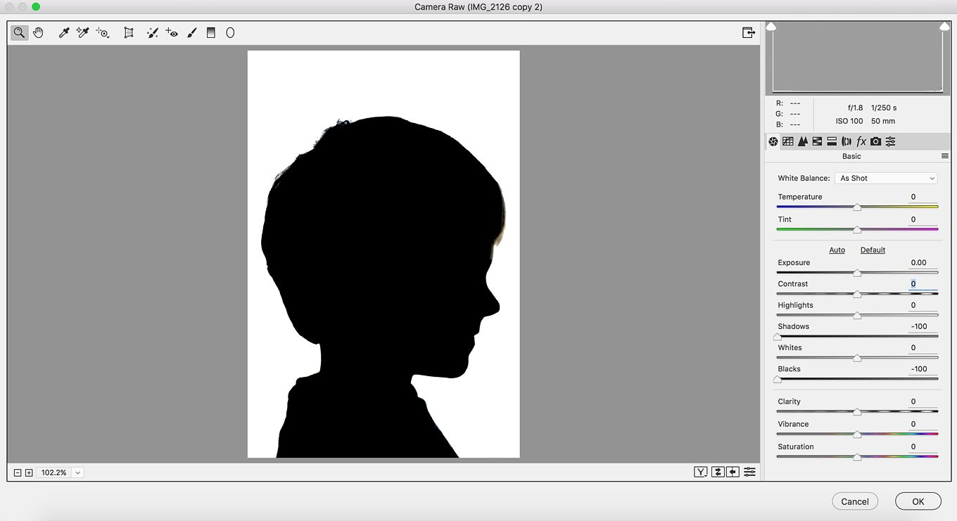 Easter Silhouette Portrait in Photoshop