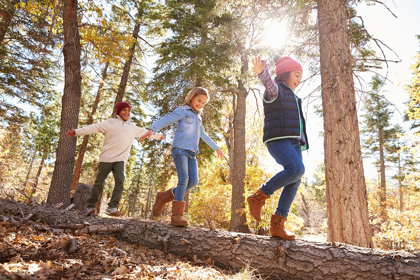Children Playing in the Woods During Fall