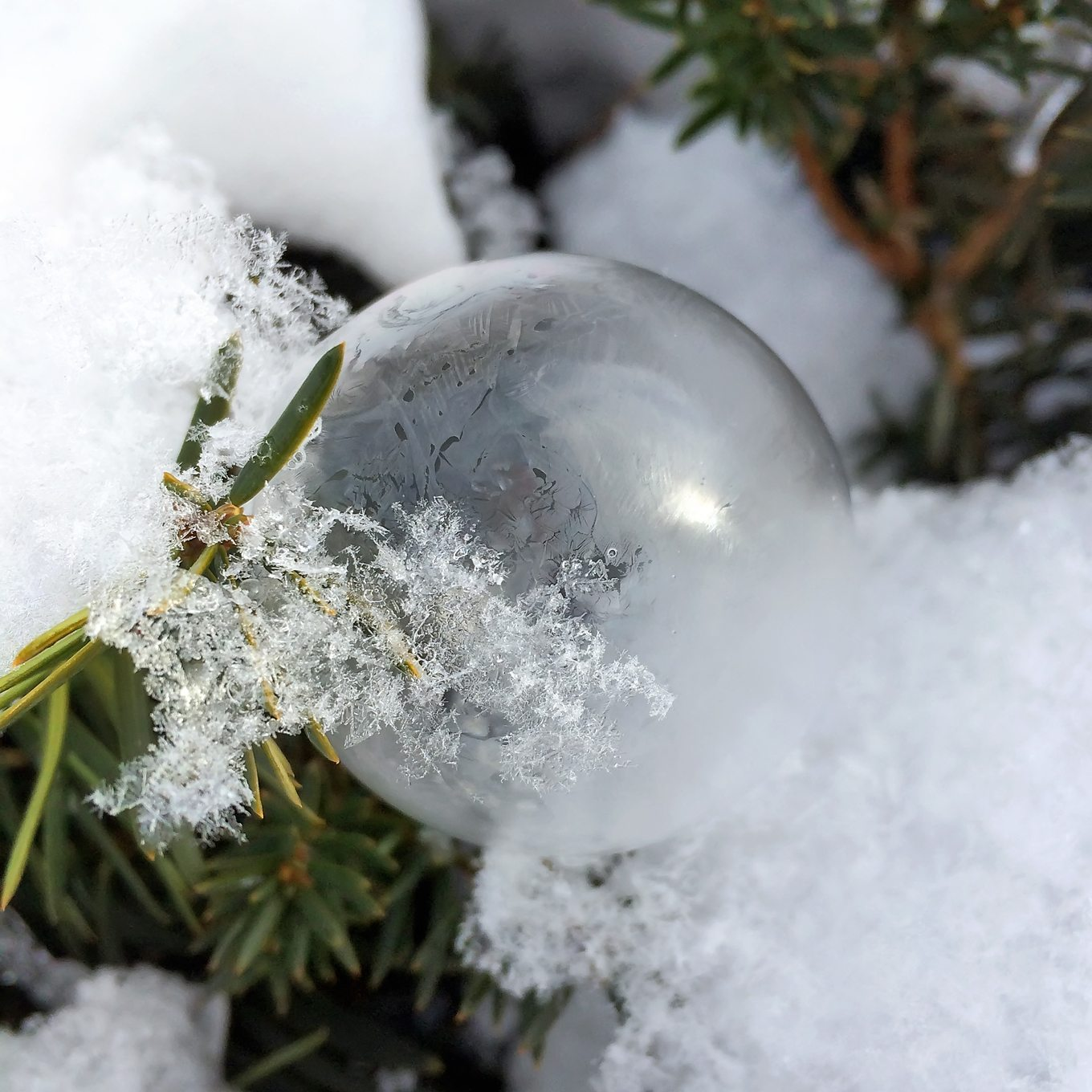 Frozen Bubble in Snow