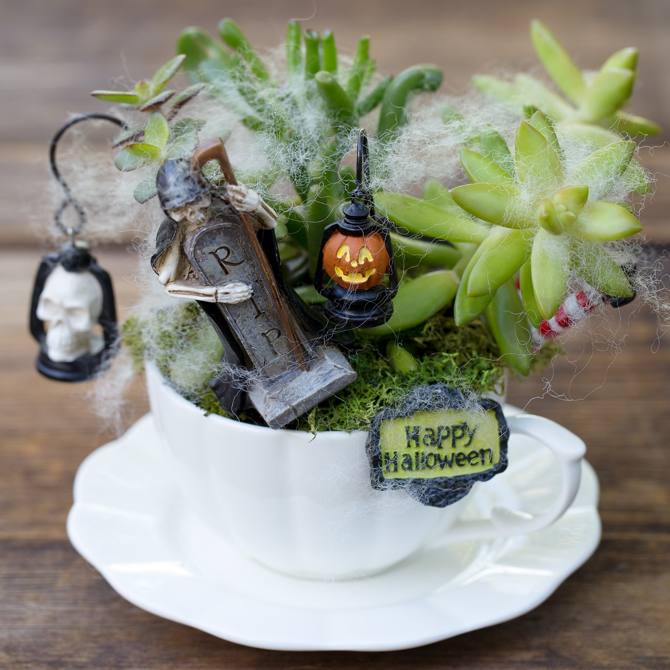Halloween Teacup Fairy Garden