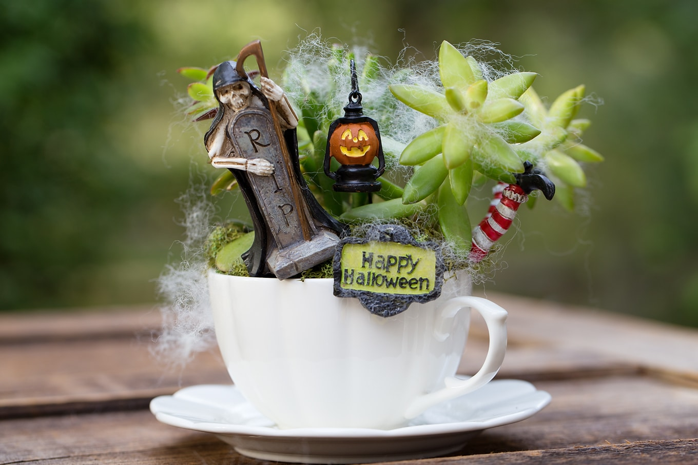 Halloween Teacup Garden