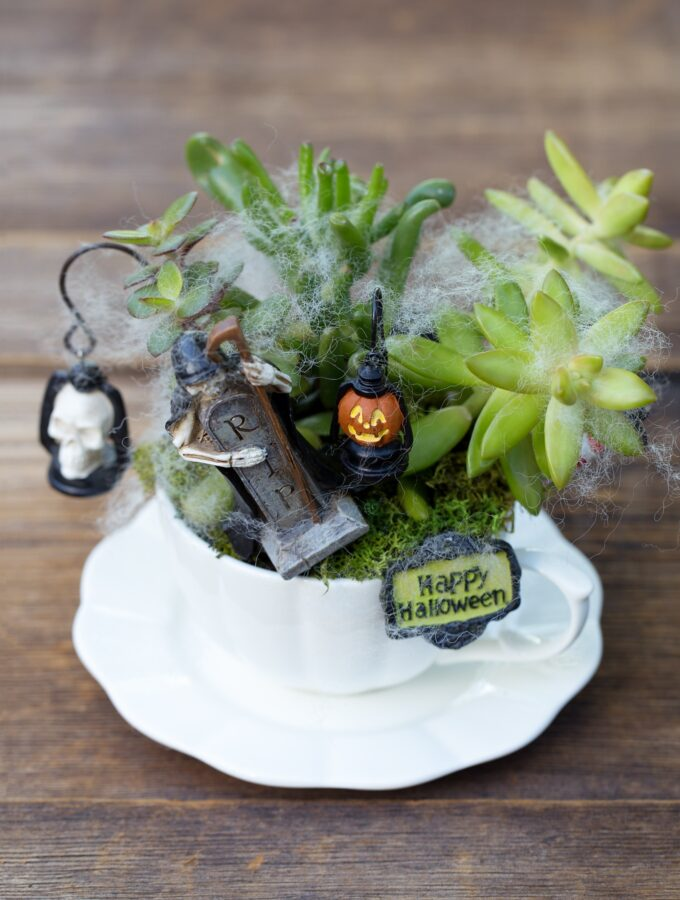 How to Make a Haunted Halloween Teacup Garden