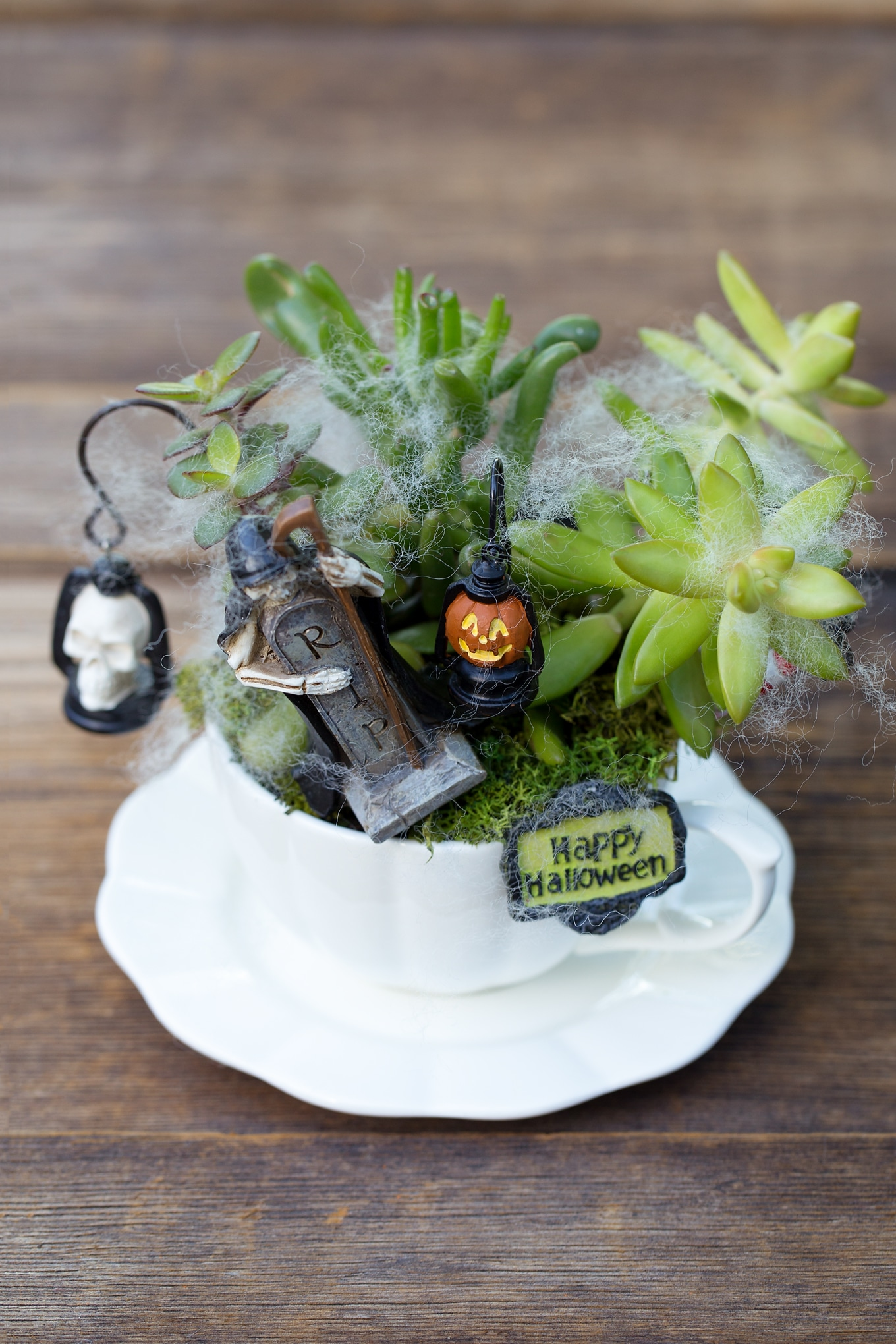 How to Make a Halloween Teacup Garden Craft
