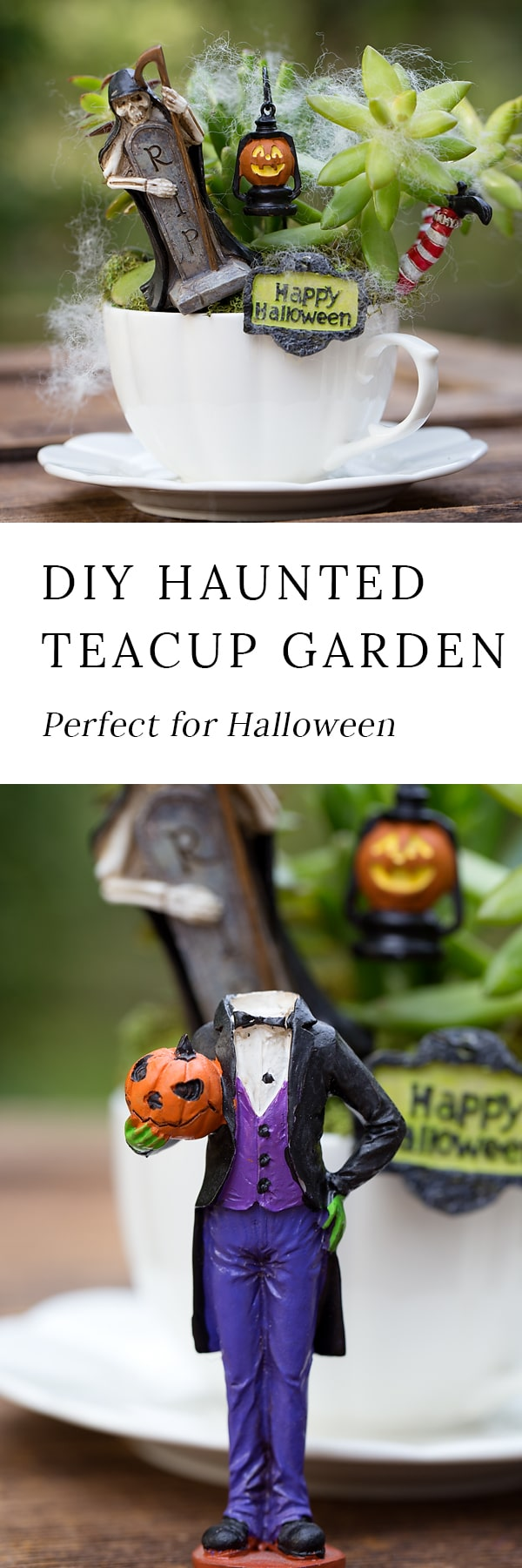 Just in time for Halloween, learn how to make a Haunted Halloween Teacup Garden with succulents, a teacup and saucer, and Halloween miniatures. It's the perfect Halloween craft for kids!