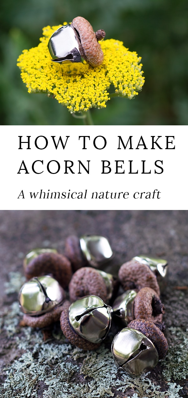 Acorn Bells, an easy nature craft for kids, are a sweet addition to gardens, fairy houses, or fall decor. #fairygarden #fairygardencrafts #acorns #naturecrafts #kidscrafts #fairyhouses