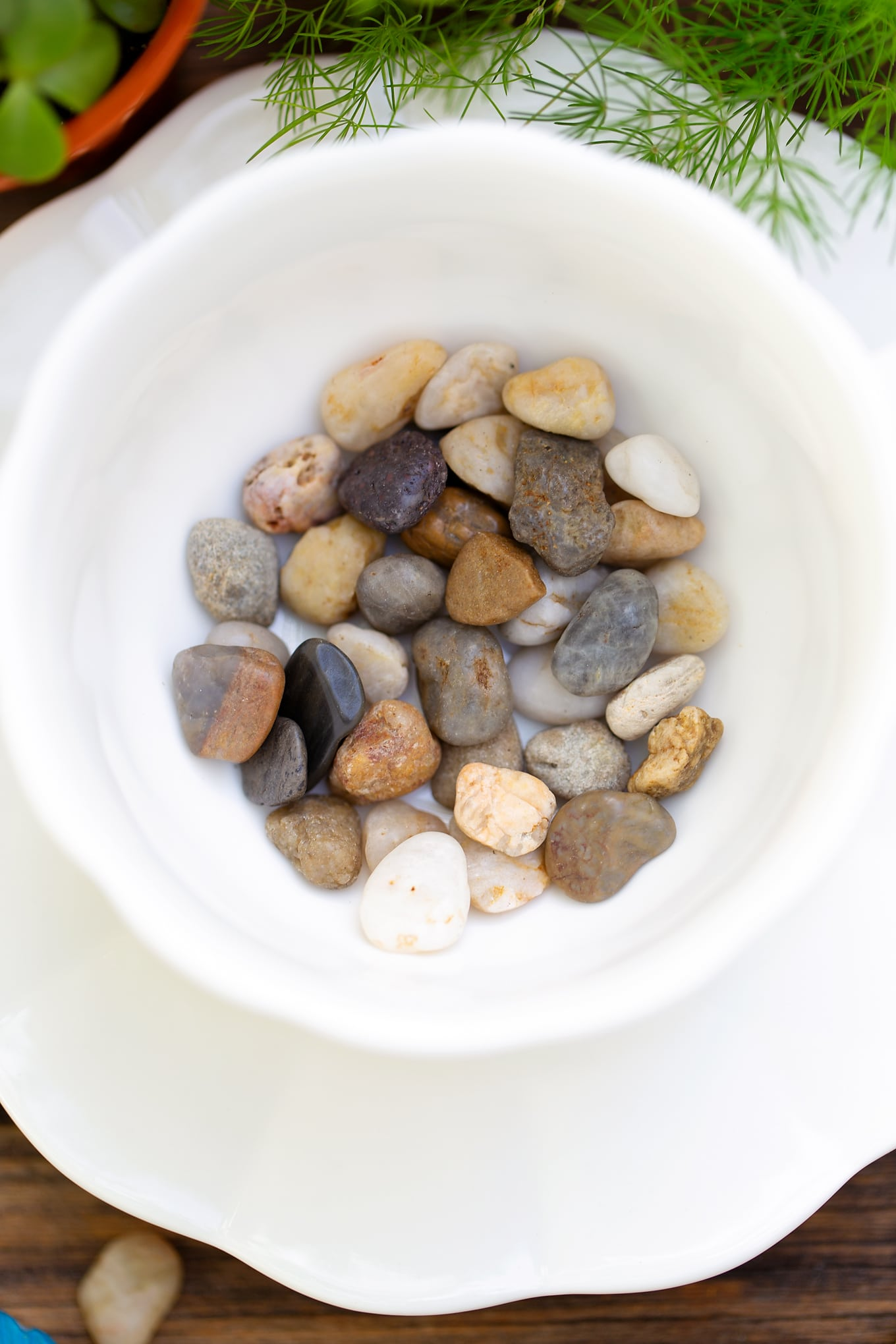 Stones in White Teacup