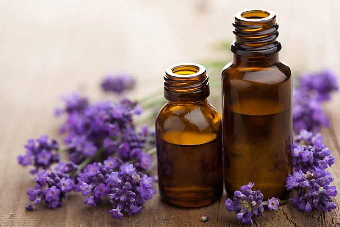 Curious about essential oils? This post briefly shares the history and science behind essential oils. A great beginner's intro!