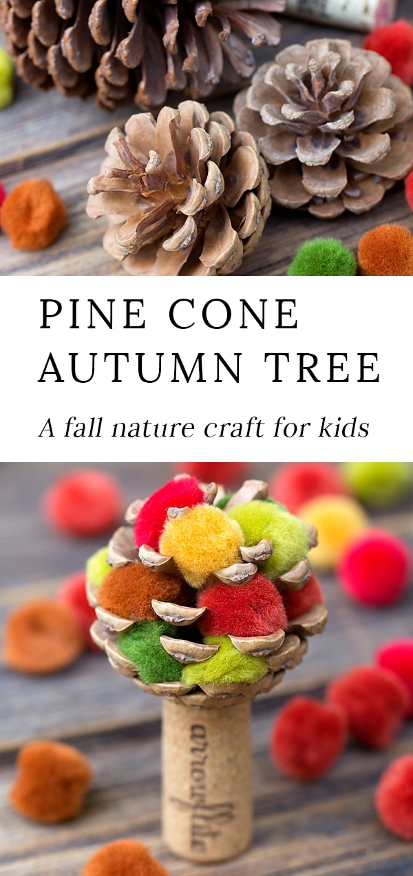 Learn how to make a colorful fall pine cone tree with pine cones, wine corks, and pom poms. This easy fall nature craft is perfect for kids of all ages! #fallpineconetree #fallnaturecraft #pineconecrafts #naturecraftsforkids #easycrafts #preschoolcrafts