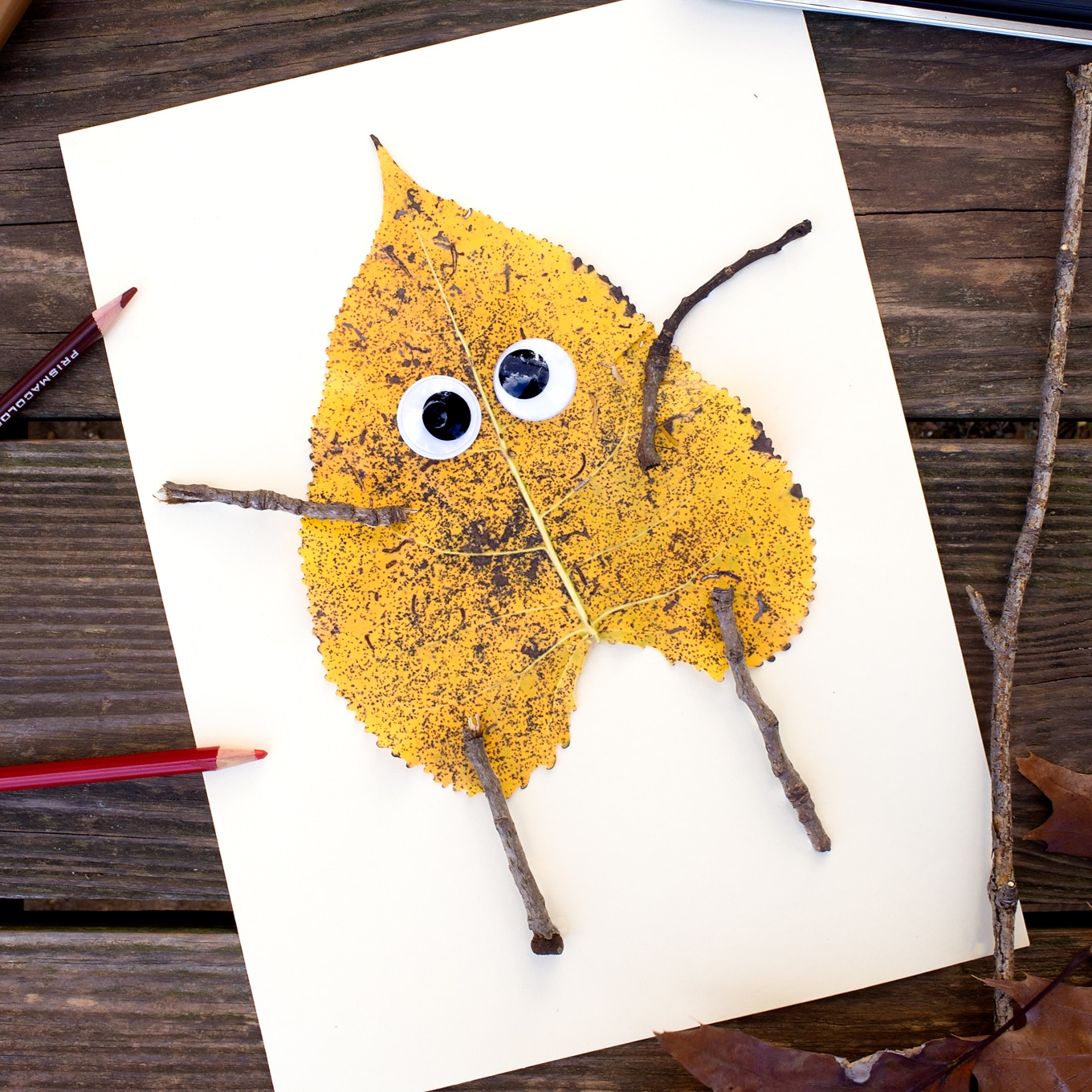 Leaf Art with Wiggly Eyes