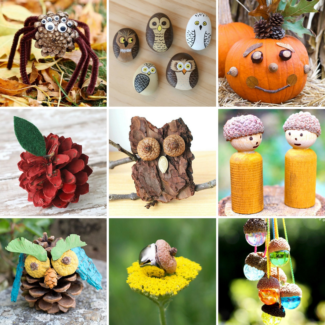 25+ Beautiful Fall Nature Crafts for Kids