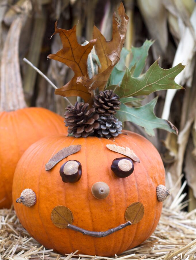 No-Carve Nature Pumpkins