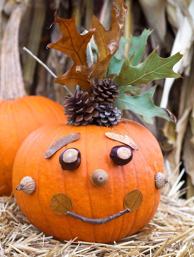 No-Carve Nature Pumpkins