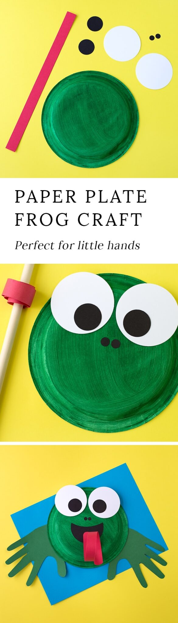 This easy paper plate frog craft is perfect for helping kids learn all about the life  sc 1 st  Fireflies and Mud Pies & Paper Plate Frog Craft