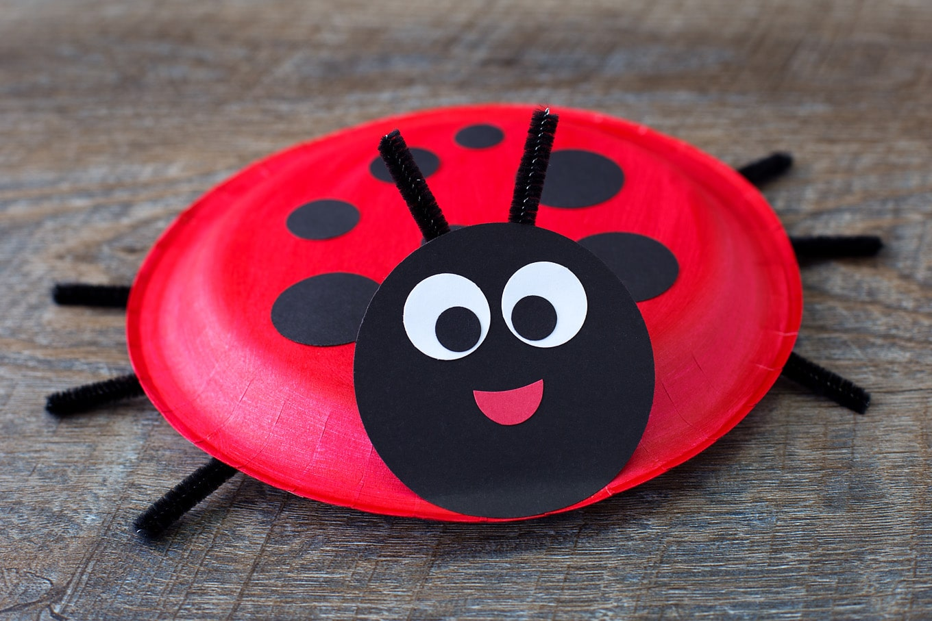 How to Make a Paper Plate Ladybug
