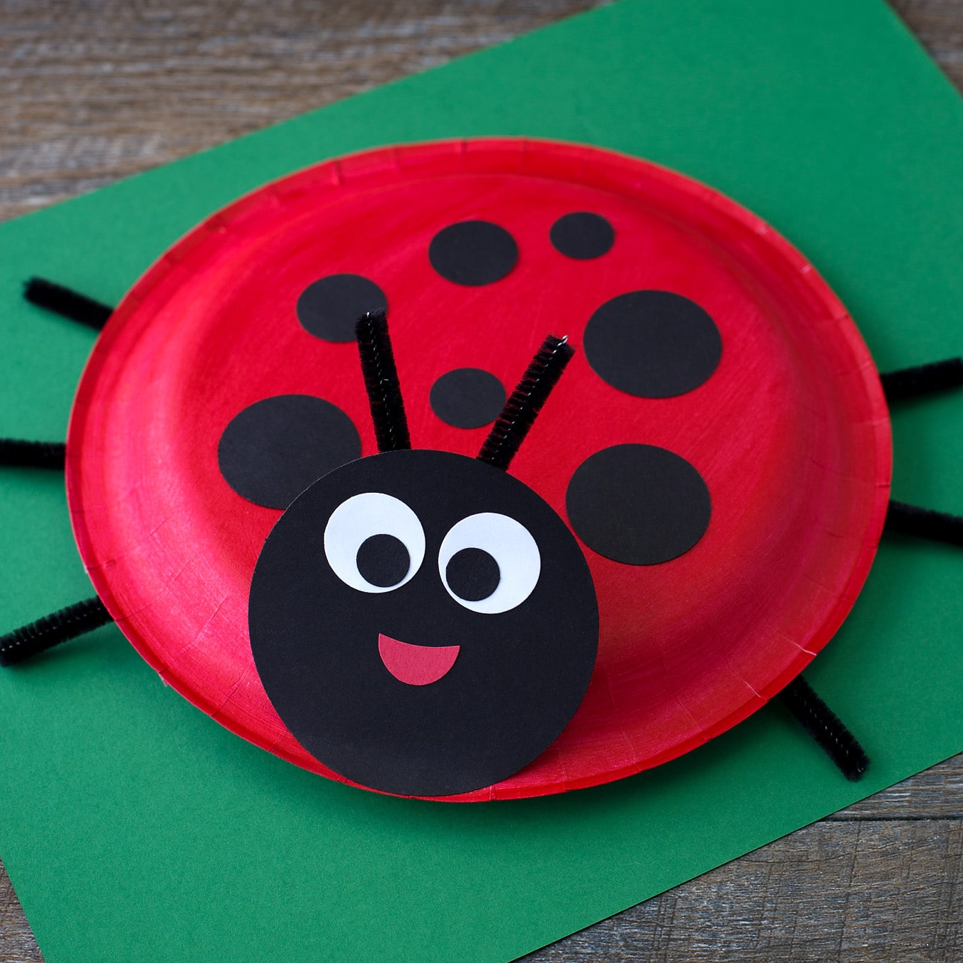 Learn how to make a simple Paper Plate Ladybug with kids. It's perfect for summer, insect lovers, and for strengthing fine-motor skills.