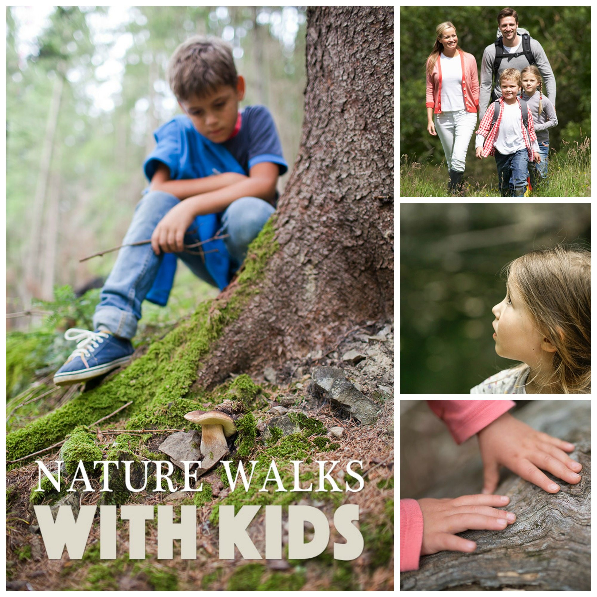 Tips for taking meaningful nature walks with kids!