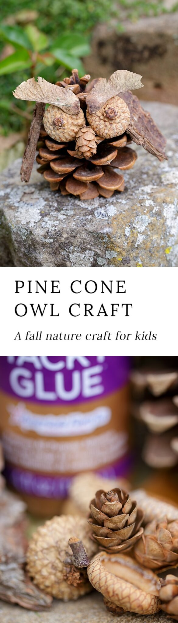 Fall is the perfect season for nature crafting! Kids will love being creative with acorns, pinecones, twigs, bark, and seeds to create one-of-a-kind Pinecone Owls.