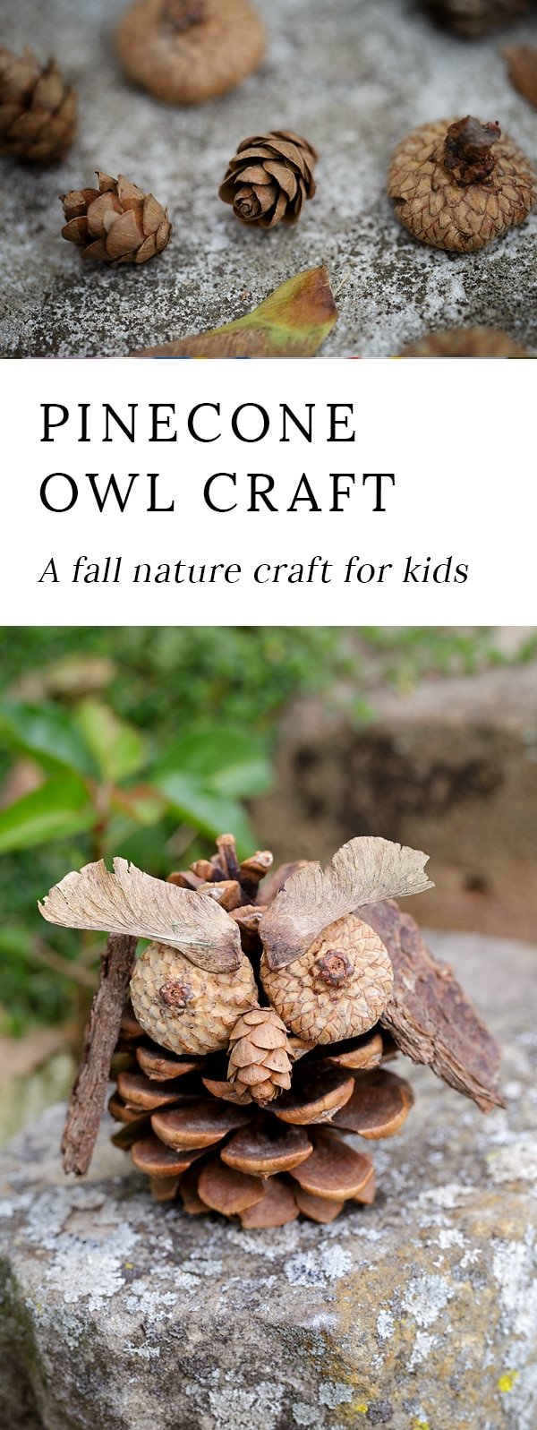 Fall is the perfect season for crafting! Kids will love being creative with acorns, pinecones, twigs, bark, and seeds to create one-of-a-kind Pinecone Owls.