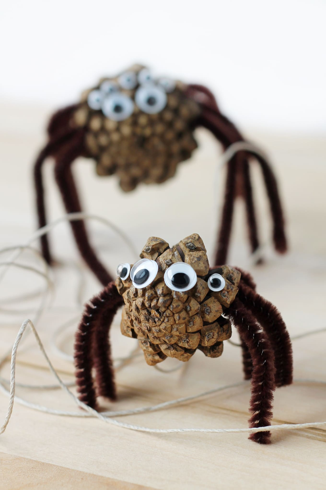 Kids of all ages will enjoy making Pine Cone Spiders. They are the perfect Halloween nature craft for kids!