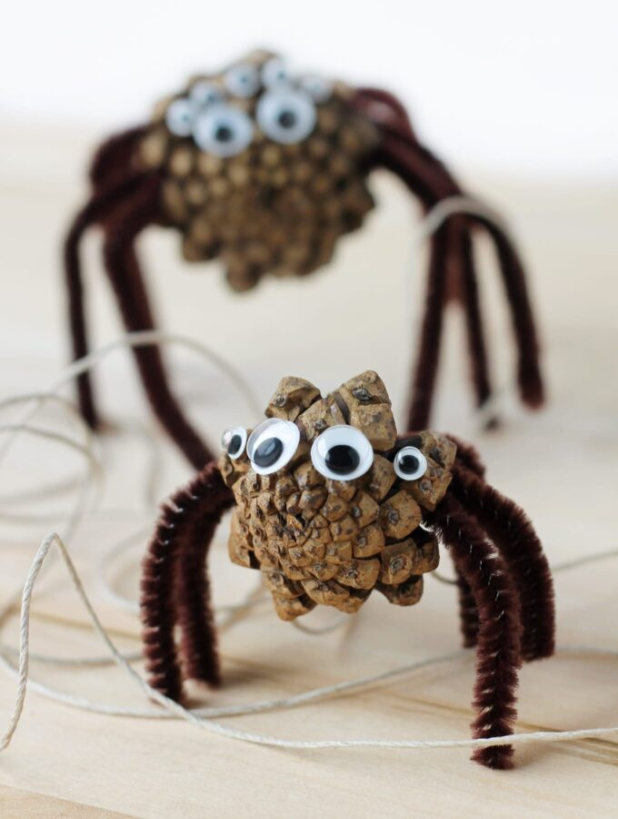 How to Make Pine Cone Spiders