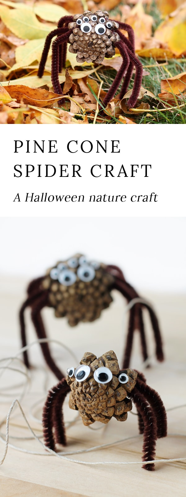 Kids of all ages will enjoy collecting pine cones to create Pine Cone Spiders for Halloween. Thiscreepy-cute nature craft is perfect for home, school, community programs, and camp. #pineconespiders #naturecraft via @firefliesandmudpies