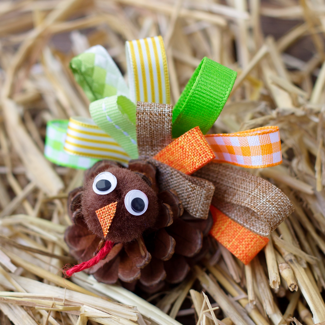 Pine Cone Turkey Craft