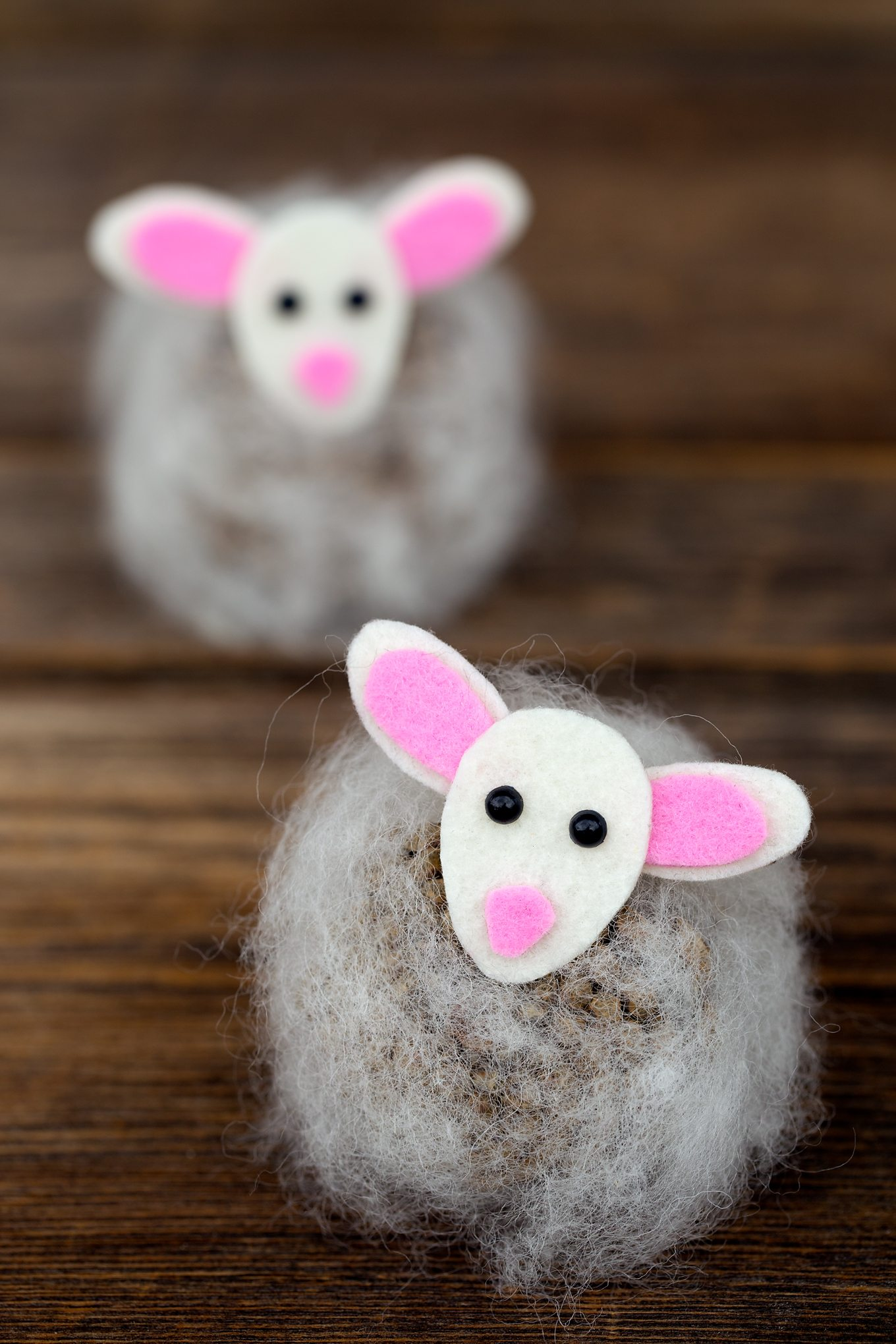 Pine Cone Lambs