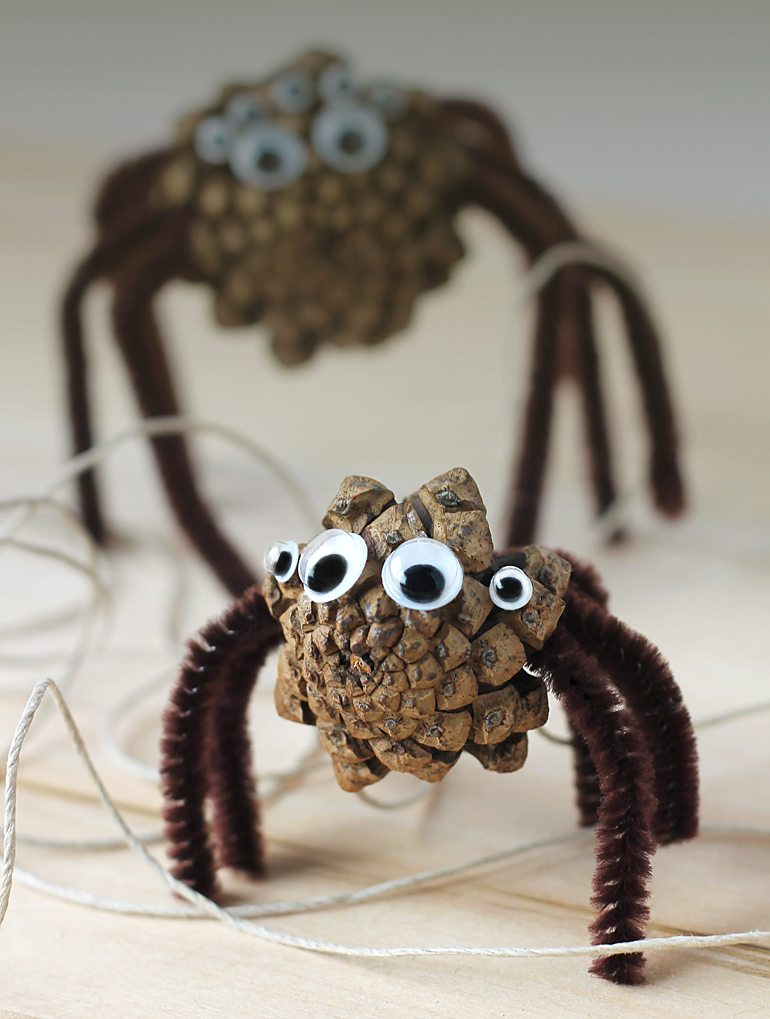 Pinecone Spiders