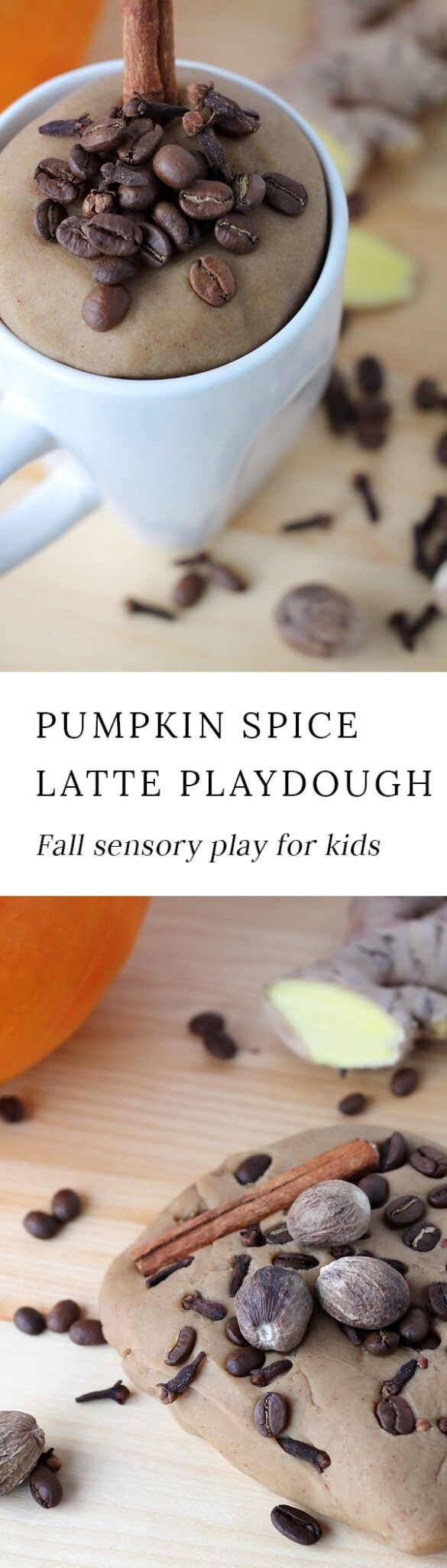 Indulge your child's senses with the rich scents of nutmeg, clove, cinnamon, and coffee beans in this buttery soft Pumpkin Spice Latte Playdough.